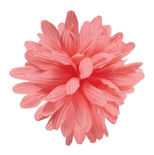 Electra Dahlia Flower